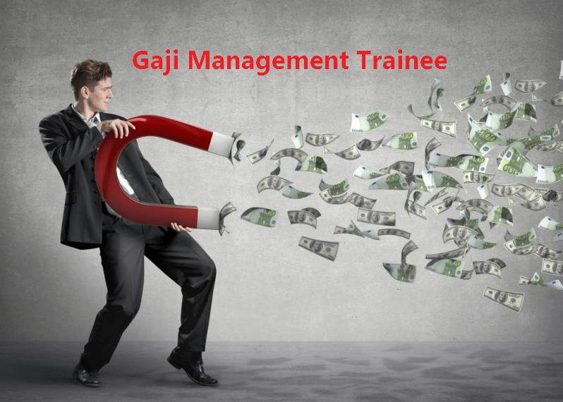 Tugas dan Fungsi Management Trainee