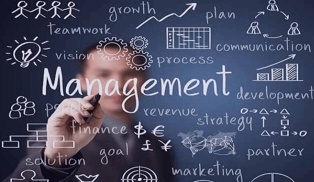 Kelebihan Menjadi Management Trainee