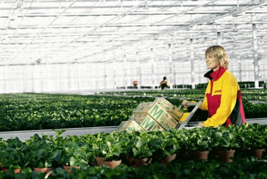 Usaha Pertanian dan Peternakan