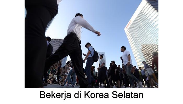 cara bekerja di korea